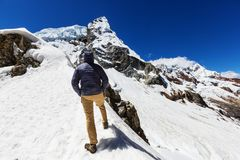 Hike in Peru Royalty Free Stock Photography