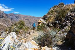 Hike in Peru Royalty Free Stock Images