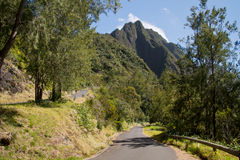 Hike in Reunion Island Royalty Free Stock Photography