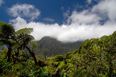 Hike in Reunion. Mountain View of the Cirque de Mafate Royalty Free Stock Image