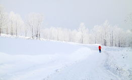 Hike in snow mountain Royalty Free Stock Photo