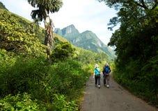Hike on Sri Lanka royalty free stock photo