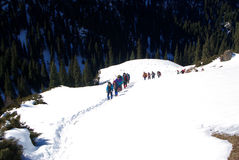 The hike team in snow Royalty Free Stock Image