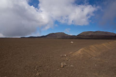 Hike to the Piton de la Fournaise Royalty Free Stock Image