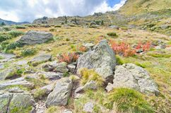 Hike to the three lakes of Tristaina, Andorra. Boulders and wild flowers in the vally of the three lakes of Tristaina (Estanys de Tristaina) in Andorra and the Stock Photo