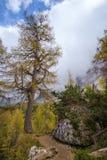 Hike from Vršič. To the beautiful Slemenova Špica in Juian Alps Stock Photo