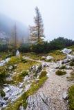Hike from Vršič. To the beautiful Slemenova Špica in Juian Alps Royalty Free Stock Photos