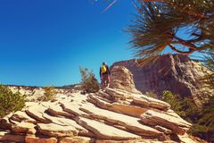 Hike in Zion Royalty Free Stock Image