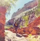 Hike in Zion Royalty Free Stock Photos