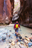 Hike in Zion. National park Stock Photos