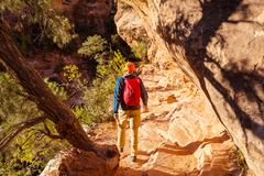 Hike in Zion stock photo