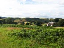 Hikeing över kullarna i Shropshire royaltyfria foton
