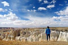 Hiker восхищая взгляды образований песчаника каньона угольной шахты, Аризоны Стоковые Фото
