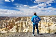 Hiker восхищая взгляды образований песчаника каньона угольной шахты, Аризоны Стоковые Фотографии RF