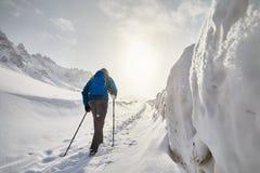 Hiker в горах стоковые изображения rf