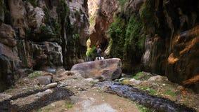 Hiker в долине Стоковое фото RF