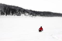 Hiker в зиме Аляски Стоковое Фото