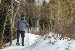 Hiker в прогулках гор на snowshoes Человек один в туризме горы зимы леса стоковые изображения