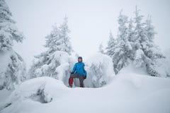 Hiker в снежном лесе Стоковая Фотография RF