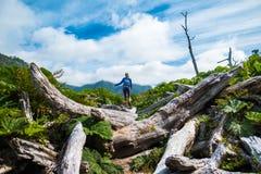 Hiker женщины двигает через трудную местность стоковое фото rf