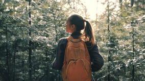Hiker женщины идя на след в сосновых лесах видеоматериал