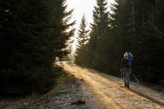 Hiker женщины идя на дорогу горы, греет на солнце светить Стоковая Фотография