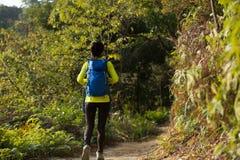 Hiker женщины на горе леса Стоковые Изображения RF