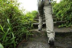 Hiker женщины на каменной горной тропе Стоковые Фото