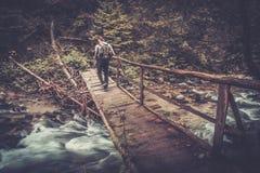 Hiker идя над деревянным мостом в лесе Стоковая Фотография