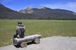 Hiker мужчины скалистых гор Стоковое фото RF