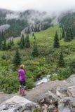 Hiker на следе озер Joffre Стоковое Изображение RF
