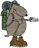 hiker собаки Стоковые Фото