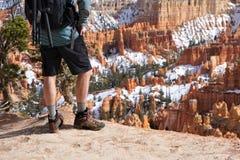 Hiker стоит на каньоне Bryce обозревает стоковое изображение