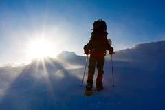 hiker Стоковая Фотография RF