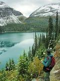 Hiker admiring Lake O'Hara, Yoho National Park, Canada Royalty Free Stock Photos