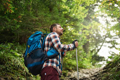 Hiker admiring the view while walking up a forest trail Royalty Free Stock Images