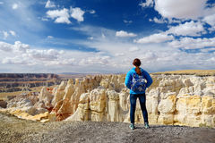 Hiker admiring views of sandstone formations of Coal Mine Canyon, Arizona Stock Image