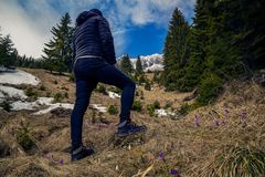 Hiker with the back on camera climbing through a valley looking at a mountain covered in snow against a blue sky near a forest and royalty free stock photos