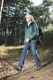 Hiker with backpack royalty free stock image