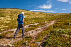 Hiker with backpack traveling in Norway mountains Dovre Stock Photos