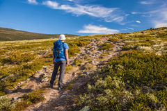 Hiker with backpack traveling in Norway mountains Dovre Royalty Free Stock Photos