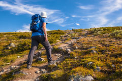 Hiker with backpack traveling in Norway mountains Dovre Stock Photography