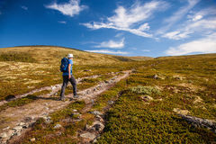 Hiker with backpack travelling in Norway mountains Dovre Stock Photography