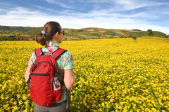 Hiker with backpack walking through meadow on background of colo Royalty Free Stock Images