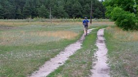 Hiker with backpack walking on a sandy country road in Ukraine at summer season. Mature hiker with backpack walking on a sandy country road in Ukraine at summer stock video