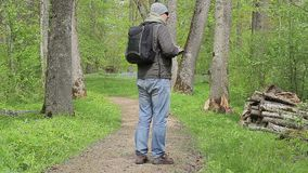 Hiker with backpack in woods stock video