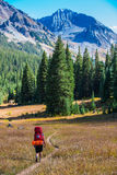 Hiker Backpacker Colorado Fall foliage Colors Royalty Free Stock Image