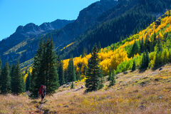 Hiker Backpacker Colorado Fall foliage Colors Stock Photography