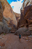 Hiker Backpacker walking down the Grand Wash Trail. Grand Wash Waterpocket Fold in Capitol Reef National Park Stock Photos