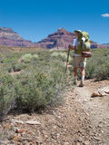 Hiker Backpacking in Grand Canyon Stock Images